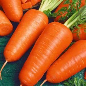 Carrot Chantenay Red Core